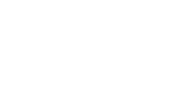 vandal logo website